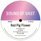 RED PIG FLOWER - Thought Crime